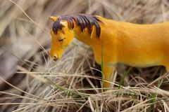 Toy horse photographed outside in dry grass royalty free stock photos