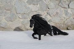 Toy Horse nero Fotografia Stock