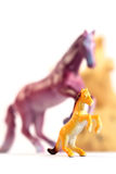 Toy Horses Foto de Stock Royalty Free
