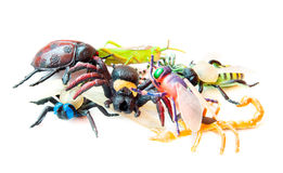 Toy insects lot. Toy insects isolated on white Stock Photos