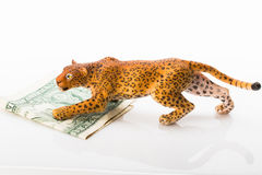 Toy jaguar and dollar Royalty Free Stock Images