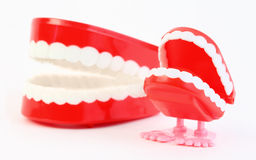Toy jaw with teeth and jaw swallowing mechanism Royalty Free Stock Photo