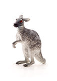 Toy kangaroo, isolated Royalty Free Stock Photo