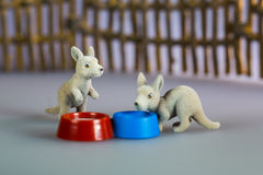 Toy kangaroos beside bowl Royalty Free Stock Photo