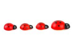 Toy ladybirds Royalty Free Stock Photo