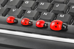 Toy ladybirds on computer keyboard Stock Photography