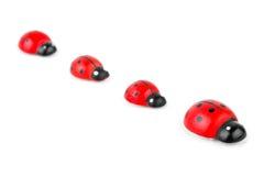 Toy ladybirds Stock Image