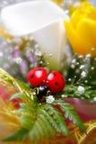 Toy ladybug on spring bouquet Stock Images