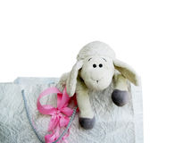 Toy lamb in a bag Royalty Free Stock Images
