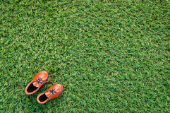 Toy leather shoe on grass field Stock Image