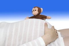 Toy monkey peeks over white striped pregnant belly. Toy stuffed monkey peeks over striped belly of 38-weeks pregnant young woman Stock Photos