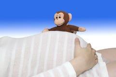 Toy monkey peeks over white striped pregnant belly stock photos