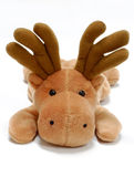 Toy Moose Royalty Free Stock Images