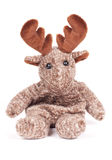 Toy Moose. Plush toy moose  on white background Stock Photography