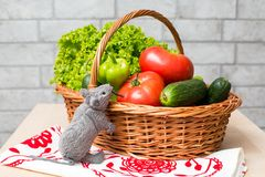 Toy Mouse and a basket of Fresh vegetables Stock Images