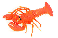 Toy Of Lobster Stock Photo
