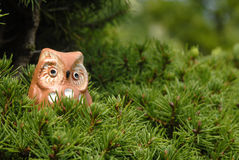 Toy owl in a tree Royalty Free Stock Photos