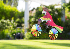 Toy parrot on a bicycle. Stock Photos