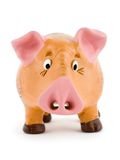 Toy pig. Close-up of toy pig isolated on white background Royalty Free Stock Image