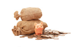 Toy pig with bags of money Stock Photos