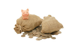 Toy pig with bags of money royalty free stock photos