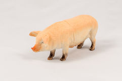 Toy pig model Royalty Free Stock Photography