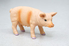 Toy pig Royalty Free Stock Image