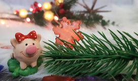 Toy pig and winter decor, congratulations on the holiday. Symbol of the year of the pig on the background of Christmas lights stock photo