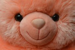 Toy pink teddy bear. stock photo