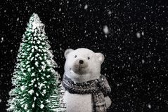 Toy polar bear on a black background with snow next to a Christmas tree royalty free stock photography