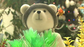 Toy polar bear with a gift in hand. stock video footage