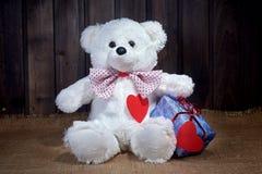 Polar bear and Valentine`s Day Stock Image