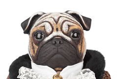 Toy pug dog in butler costume Royalty Free Stock Photo
