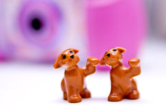 Toy puppies. Two toy puppies waving their paws on a white pinky background Stock Images