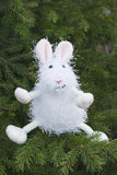 Toy rabbit Royalty Free Stock Photo