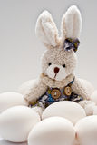 Toy rabbit Royalty Free Stock Photos
