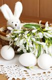 Toy rabbit, eggs and snowdrops Stock Photo