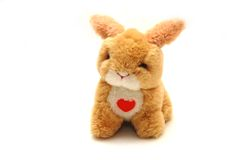 Toy rabbit with heart in front Royalty Free Stock Image
