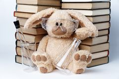 A soft toy rabbit royalty free stock images