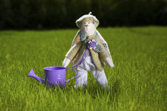 Toy rabbit with watering can on grass. Cute toy rabbit in clothes standing with the watering can on the grass, outdoors Royalty Free Stock Images