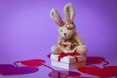 Toy Rabbit zit op een wit giftvakje met een Rood Lint op document harten op een purpere achtergrond stock foto's
