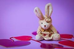 Toy Rabbit zit op een wit giftvakje met een Rood Lint op document harten op een purpere achtergrond royalty-vrije stock foto