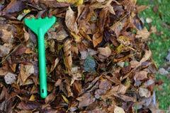 Toy Rake On Fallen Leaves imágenes de archivo libres de regalías