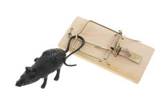 Toy Rat and Mousetrap Stock Photo