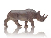 Toy Rhino Stock Photos