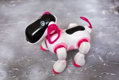 Toy robot white and pink, on a concrete background. The dog is a robot. Toy robot white and pink, on a concrete background. The toy is a musical robot, sings royalty free stock photography