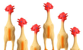 Toy Rubber Chickens. On White Background royalty free stock photography