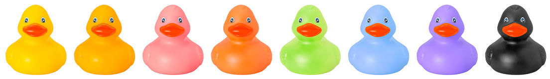 Toy rubber colored ducks front side royalty free stock image