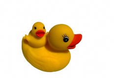 Toy rubber duck chick Stock Photo
