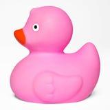Toy Rubber Duck cor-de-rosa Imagem de Stock